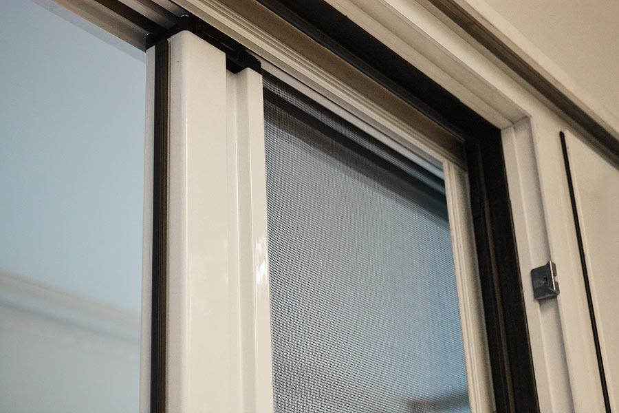 Zanzariera la zanzariera una rete molto fina che viene - Uccelli che sbattono contro le finestre ...